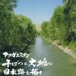 KANBATSUNODAICHI